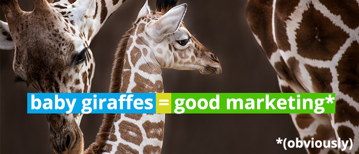 Providing Free Content Pays Off – The Story of April the Giraffe
